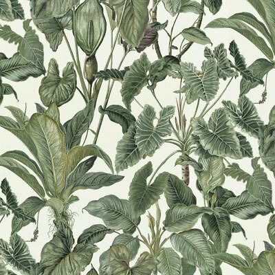 Erismann Paradiso Wallpaper Jungle Green Leaves Paradise Tropical Feature Vinyl