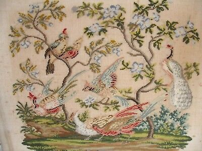 Antique 19th Century Woolwork  and Beadwork of Birds in Trees 21.5ins x17ins