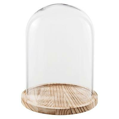 Glass Display Cloche Bell Jar Cover Dome Flower Preservation Wooden Base 29cm
