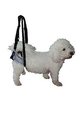 Walking Rear Support Harness for Dog Mobility & Recovery