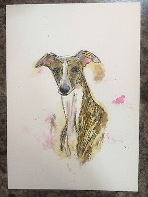 Original Watercolour And Ink Painting Whippet Greyhound Lurcher Dog Mixed Media