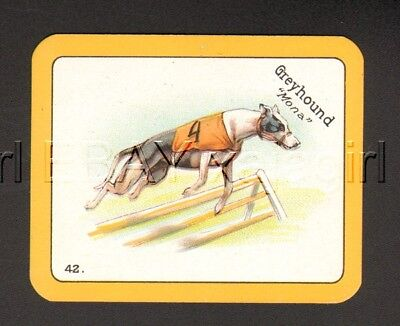 DOG Greyhound Coursing (ID'd) 1920s Swap Playing Card 1