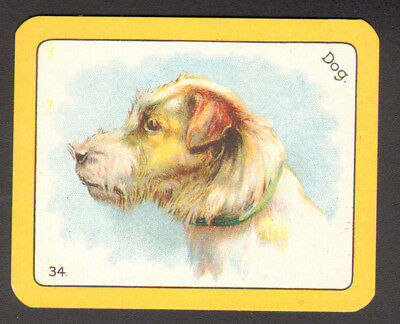 DOG Irish Spaniel, Antique 1920s Swap Playing Card