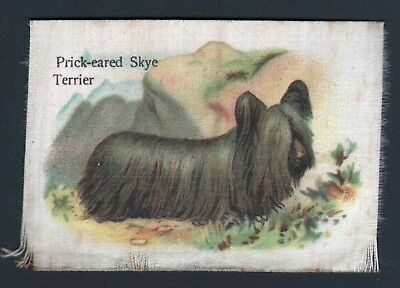 DOG Skye Terrier, Antique 1913 Silk Trading Card