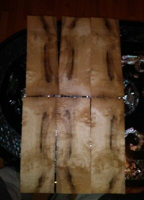 "6 pieces of myrtlewood raw wood veneer 16"" x 5 3/4"" each Luthier burl"