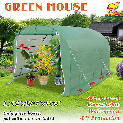 Green House Walk In Larger Garden Outdoor Plant Greenhouse 10'X7'X6'
