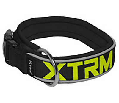 Xtrm Neon Flash Reflective Comfortable Dog Collar Lead 4 Sizes New Strong