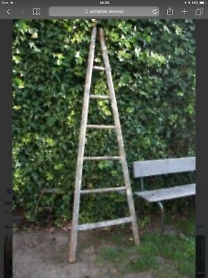 Large vintage French Orchard Ladder/  echelles tenoval/bathroom  towel rail