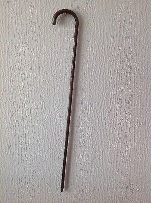 "Old walking stick -silver Collar -length 36""."