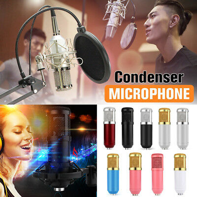 Condenser Pro Audio BM800 Microphone Sound Studio KTV Dynamic Mic +Shock Mount