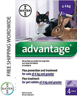 Pack 4 Advantage 80 Large Cat > 9 lb over 4kg over 9lb > 4kg - ADVANTAGE