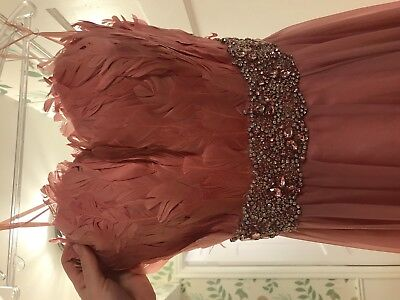 Jovani Feather Pink Prom/ Pageant Dress! Size 2!