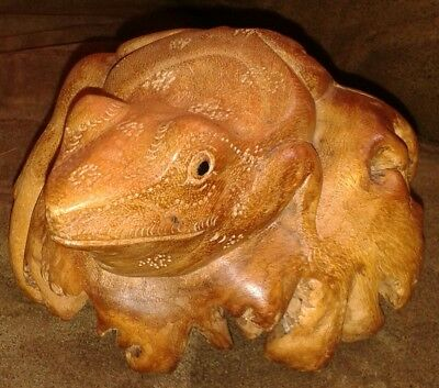 Frog Hand Carved from Parasite Wood, Amphibian Exotic Garden Figurine