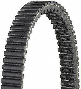 Dayco Products Inc XTX5034 Extreme Torque Drive Belt
