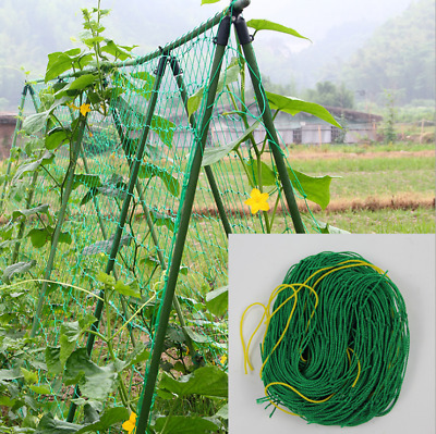 Net Mesh Trellis Plant Support Climbing Netting Fruits Vine Green Nylon Fence