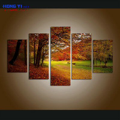 Large Modern Forest Landscape Canvas Print Painting Wall Art Home Decor 5 piece