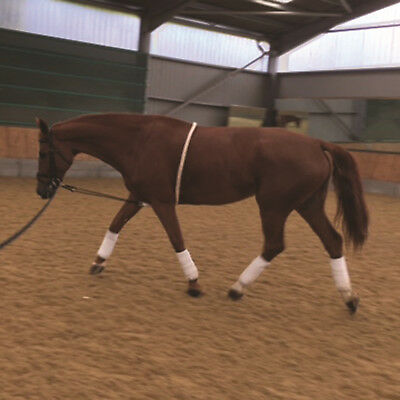 Mark Todd Soft German Cotton Rope Style Harry Helps Lunging Aid 14-17hh Cream