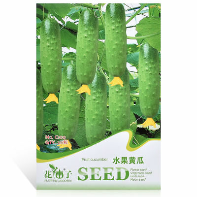 20Pcs Cucumber Seeds Russian Pickling Organic Fruit Vegetable Home Garden Plant