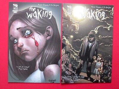 THE WAKING #3A,4A (VFNM) ALE GARZA MELO variants 1st print Grimm Fairy Tales