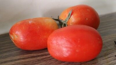 Digital Picture/photo/image/wallpaper/desktop Jpeg-Tomatoes