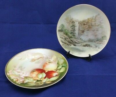 Vintage Hand Painted Plates x 2