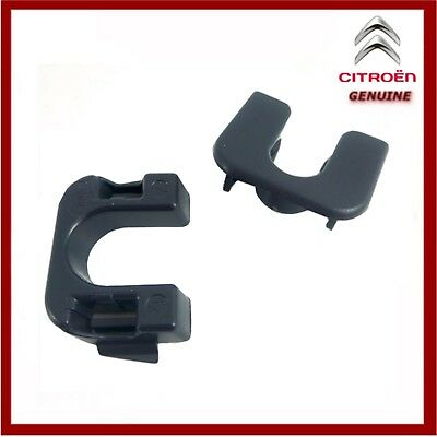 Genuine Citroen C3 & DS3 Rear Parcel Shelf Clip 8795EN