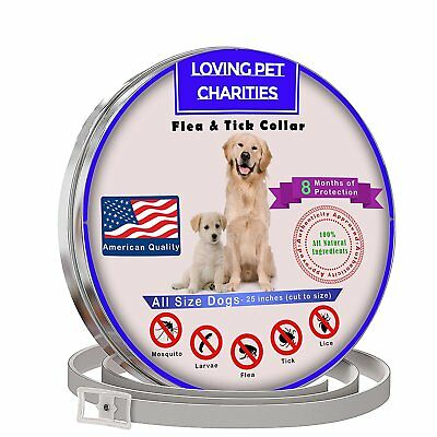 Flea And Tick Collar For Dogs - 8 Months Protection - One Size Fits All - Large