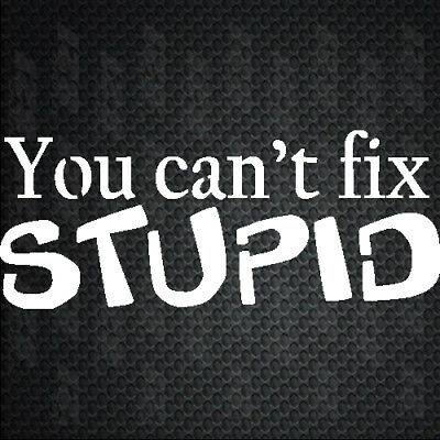 You Cant Fix STUPID new best cool funny Bumper Sticker Decal Yeti Cup car truck
