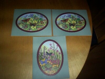 3 vintage natural history museum large butterfly greeting cards