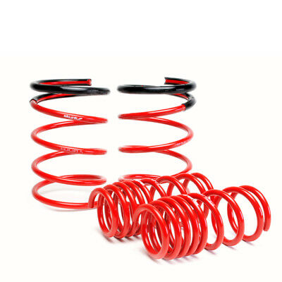 Skunk2 Racing 519-05-1670  Lowering Kit