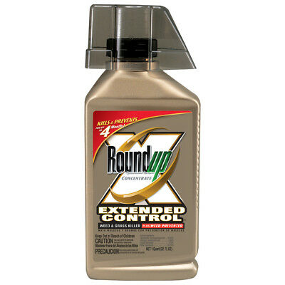 Roundup Extended Control 32-oz Glyphosate Killzall New Weed and Grass Killer