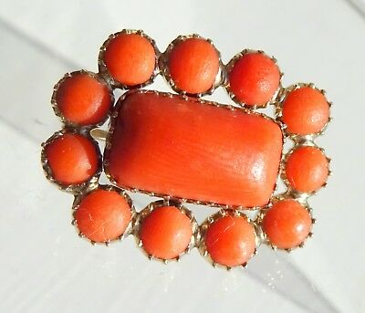 Georgian 10ct Gold and Carved Coral Lace Pin Brooch