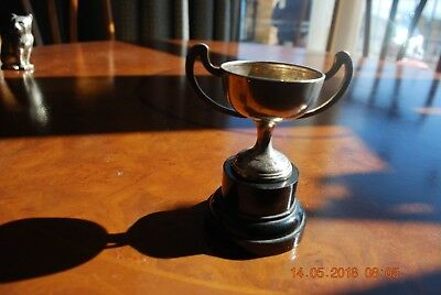 EPNS silver plated trophy A1 India