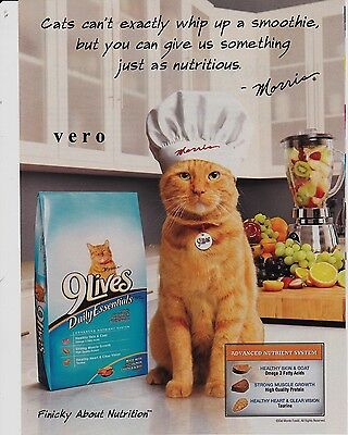 9 LIVES cat food 2009 magazine print ad page clipping CHEF MORRIS orange CUTE