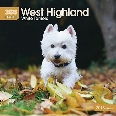 West Highland Blanco Terriers 365 Days Oficial 2018 Cuadrado calendario de pared