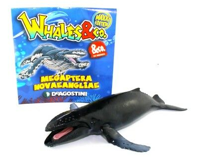 DeAgostini Whales & Co.Maxxi Edition Nr.7 Buckelwal
