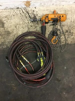 Harrington AH500P Air Hoist Capacity 500 lbs. Chain 10 Ft.