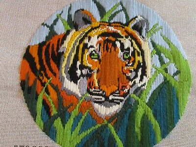 Completed Long Stitch Of Head Of A Bengal Tiger. 29.5 Cms Aperture.