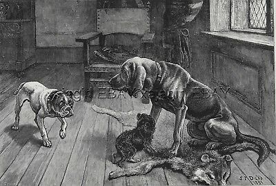 DOG Bloodhound Guards Spaniel Puppy from Bulldog, LARGE 1880s Antique Print