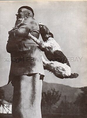 DOG Fox Terrier Wire Haired Agility Dog Gets Piggy-Back Ride Vintage Print 1930s