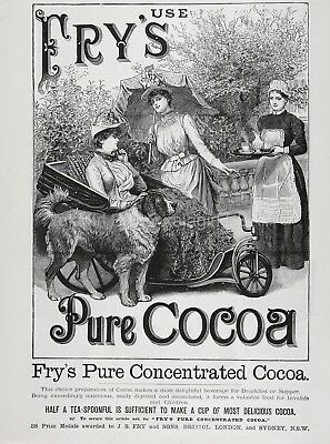 Dog St. Bernard Handicapped Woman Wheelchair Fry's Cocoa Ad 1880s Antique Print