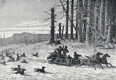 Wolf Hunting From Troika Sled Russia, 1860s Antique Engraving Print & Article