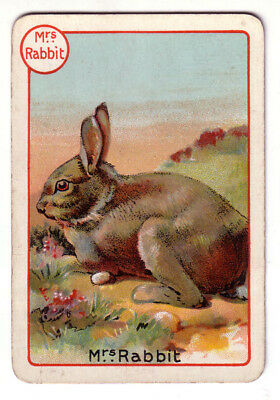 Rabbit Brown, Lovely Victorian Playing Card- Swap Card!