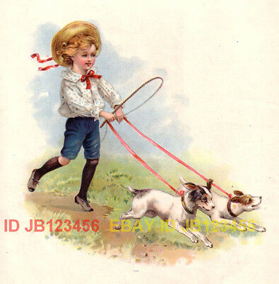 DOG Jack Russell Terrier Dogs, Boy Plays Carriage Driver, Nice Antique Print