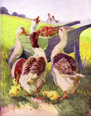 Geese At Apple Wheelbarrow 1930s CHILDREN's Art Print