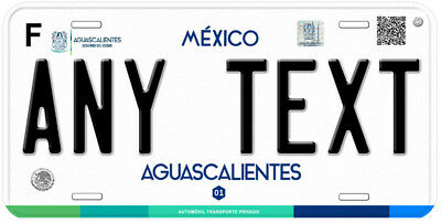 Aguascalientes Mexico Any Name Number Novelty Auto Car License Plate C04