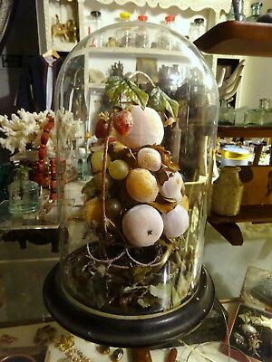 Antique Victorian Wax Fruit Glass Dome Display