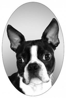 """4""""X6"""" BOSTON TERRIER dog static cling glass window decal removable,reusable"""
