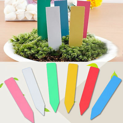 100pcs Pot Stake Tags Nursery Stick Markers Tool Plastic Plant Labels Seed Tray