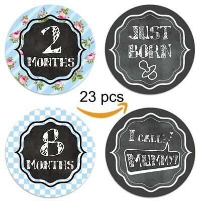 "23 Pack of 4"" Milestone Baby Monthly Belly Sticker"